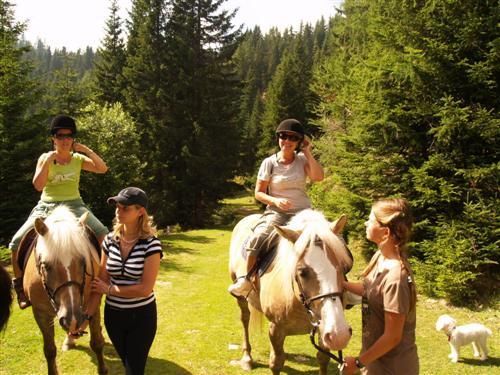 Reiten Sommerurlaub Österreich Familien