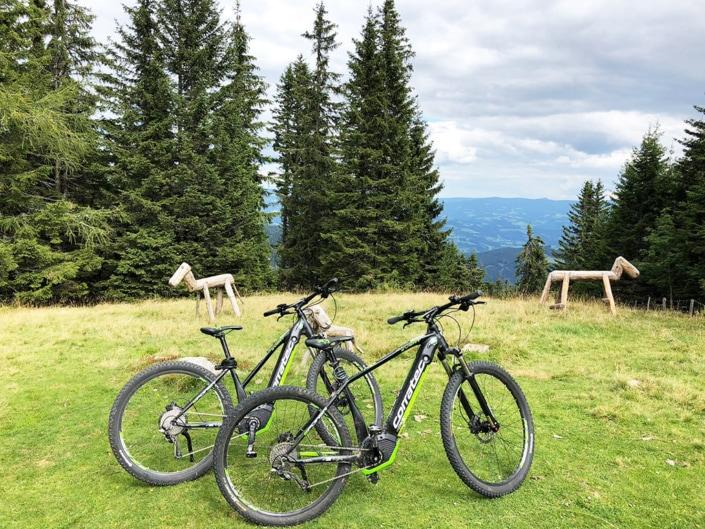 Biciclette elettriche da noleggiare gratuito per nostri ospiti