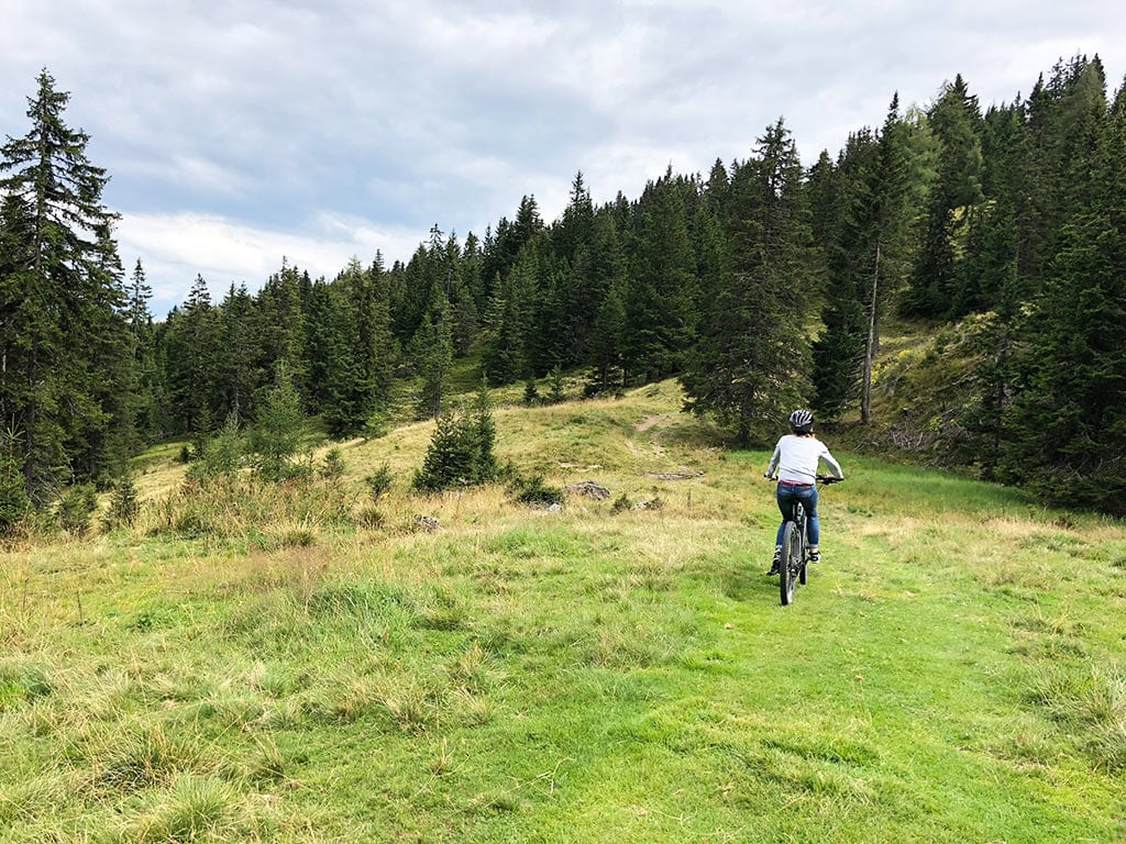 Mit den eBikes durchs grüne am Waldweg.