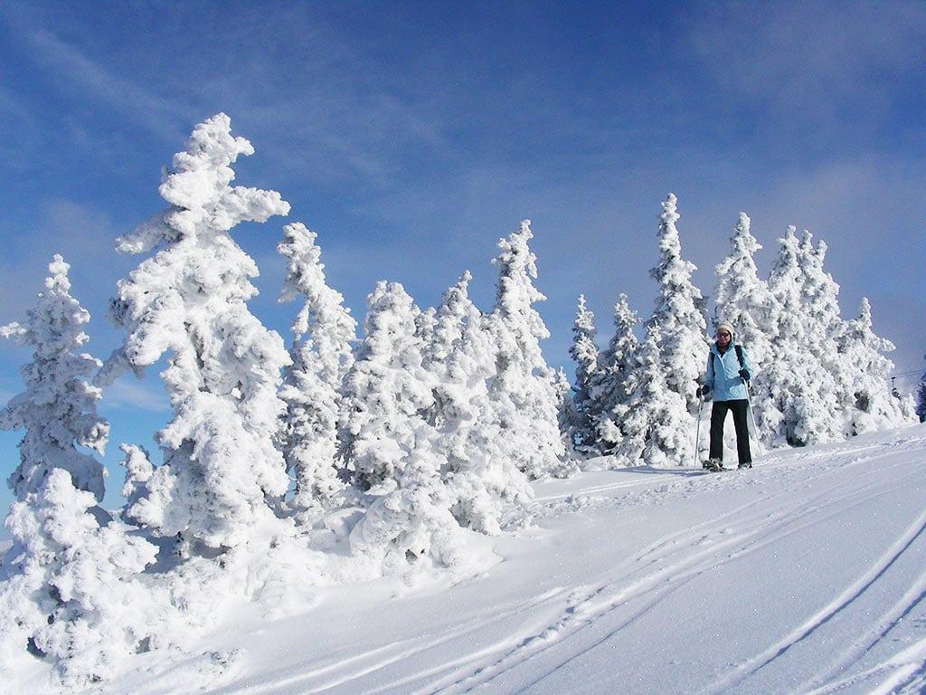 Schneeschuhe Tiefschnee Wanderung Hochegger