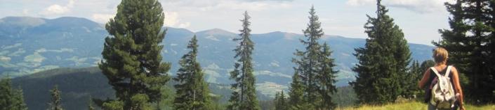 Wandern am Klippitztörl - Nächtigung Hochegger